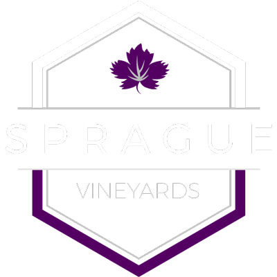 sprague vineyards